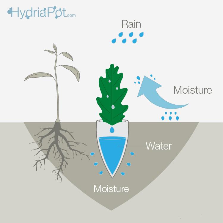 20140611163934-hydria_water_scheme