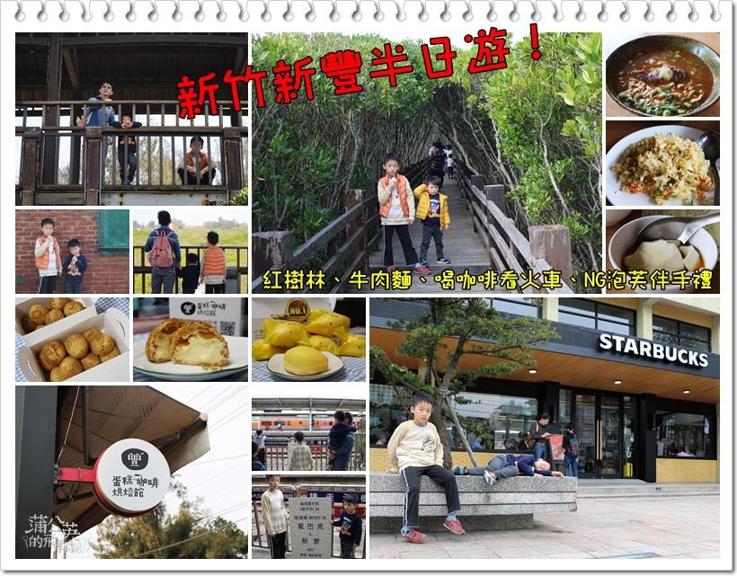 20190203-新豐紅樹林00.jpg