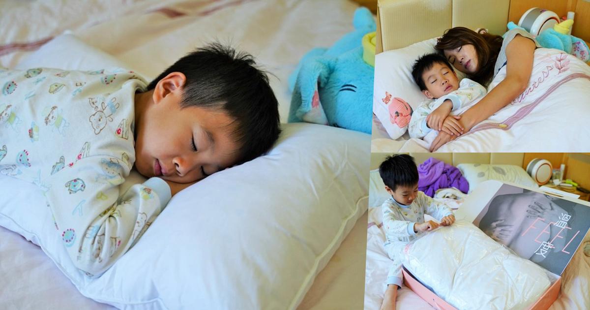 枕頭 好睡枕頭 優質品牌 羽毛枕 推薦 首選 舒適 輕柔