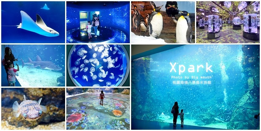 Xpark桃園水族館